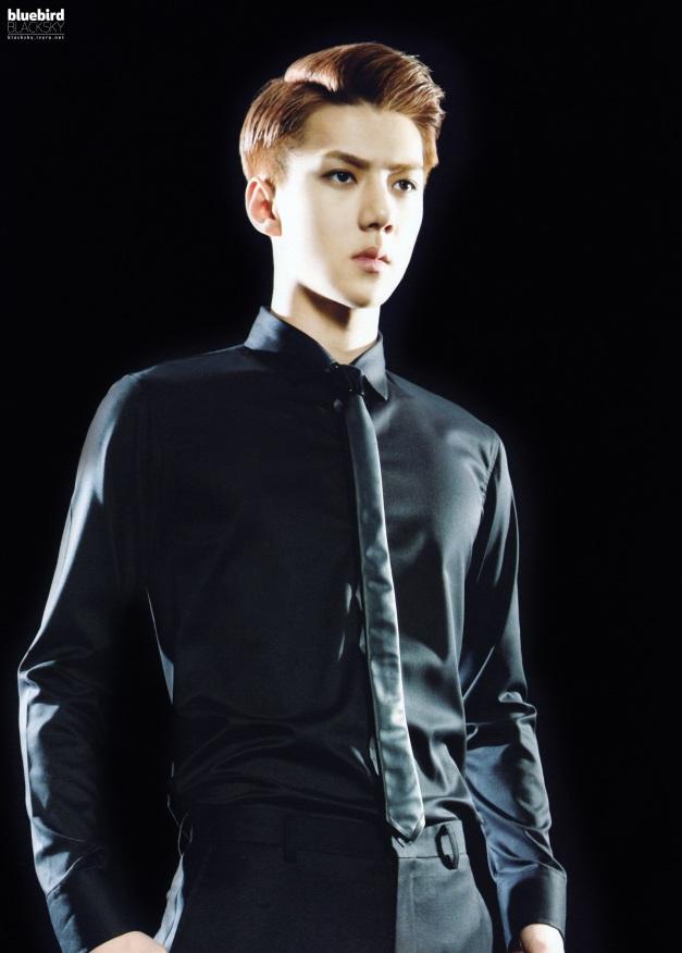 EXO_1st_concert_goods_brochure_sehun01
