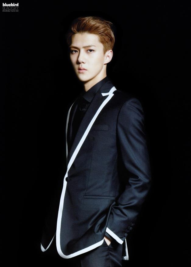 EXO_1st_concert_goods_brochure_sehun02